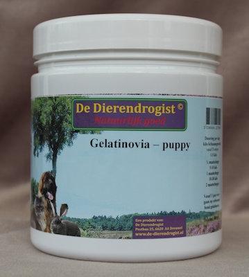 Gelatinovia - Puppy AKTIE  500 gram