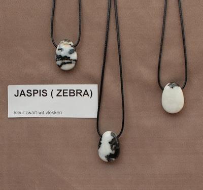 aspis zebra edelsteen (USA) kleur wit/zwarte vlekken  1 Edelsteen