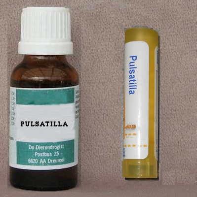 Pulsatilla D6  20 ml/80 korrel