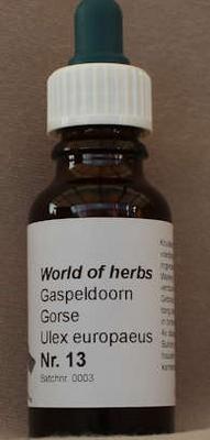 NR. 13  GORSEL / GASPELDOORN / ULEX EUROPAEUS  20 ml druppels