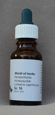 NR. 16  KAMPERFOELIE / HONEYSUCKLE / LONICERA CAPRIFOLIUM  20 ml druppels