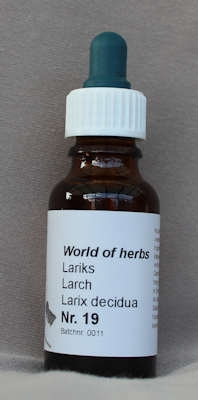 NR. 19  LARIKS / LARCH / LARIX DECIDUA  20 ml druppels