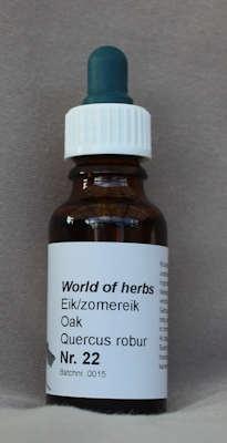 NR. 22  EIK-ZOMEREIK / OAK / QUERCUS ROBUR  20 ml druppels