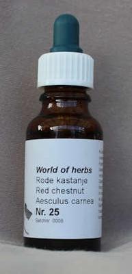 NR. 25  RODE KASTANJE / RED CHESTNUT / AESCULUS CARNEA  20 ml druppels