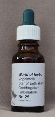 NR. 29  VOGELMELK / STAR OF BETHLEHEM / ORNITHOGALUM UMBELLA  20 ml druppels