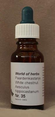 NR. 35  PAARDENKASTANJE / WHITE CHESTNUT / AESCULUS HIPPOCA  20 ml druppels