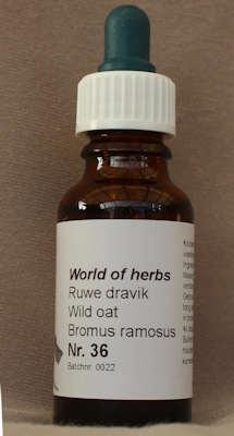 NR. 36  RUWE DRAVIK / WILD OAT / BROMUS RAMOSUS  20 ml druppels