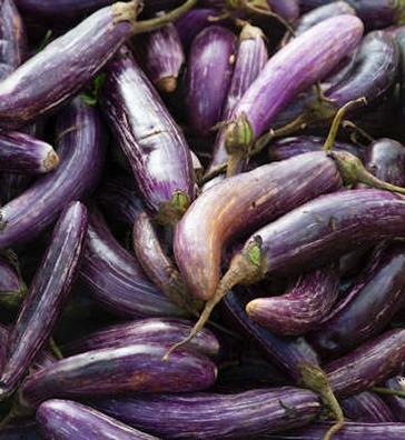Aubergine - Solanum melonga  100 gram