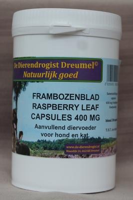 Frambozenblad / vrucht capsules 320 mg.