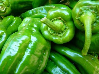 Paprika groen (capsicum annuum)  100 gram