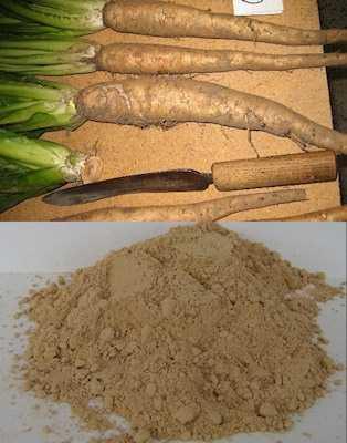 Cichoreiwortel  100 gram