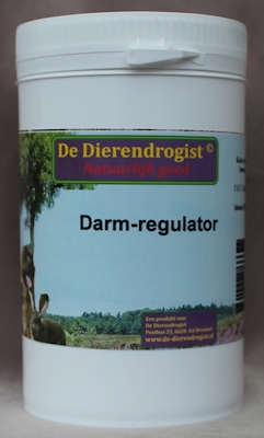Darmregulator