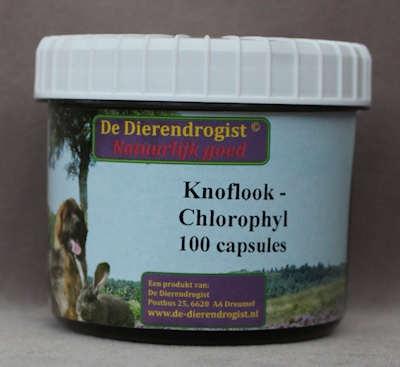 Knoflook - chlorophyl capsules  100 stuks