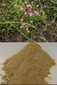 Duizendguldenkruid gemalen 100 gram